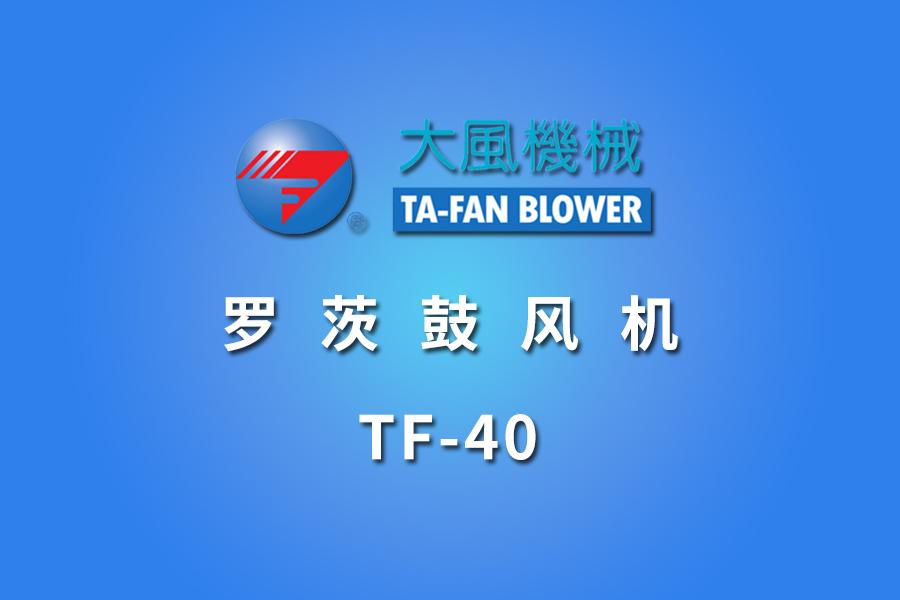 TF-40羅茨鼓風機