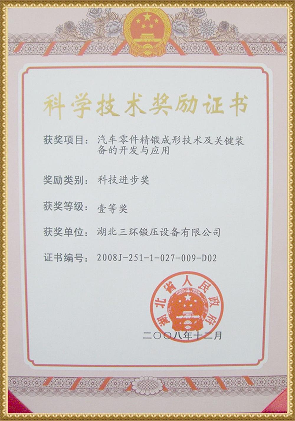 2009省科技奖(冷精锻)