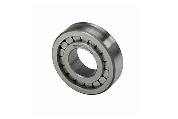Gearbox bearing MU1307