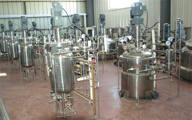 机械搅拌发酵罐1